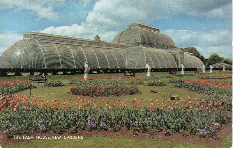 photo credit: The Palm House, Kew Gardens via photopin (license)