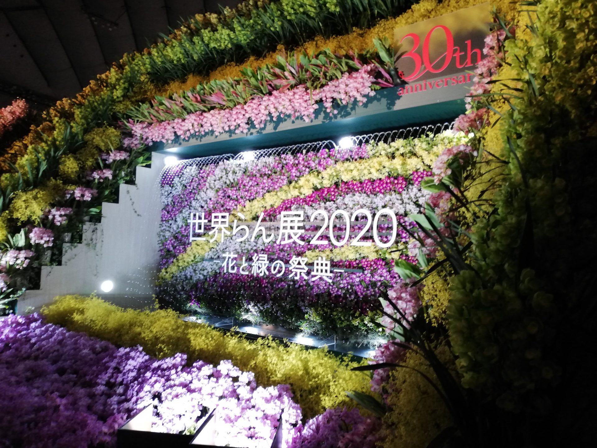 「世界らん展2020」へ行ってきました。初日ははじめての「スペシャルナイト」。次いで翌日にも参戦…。
